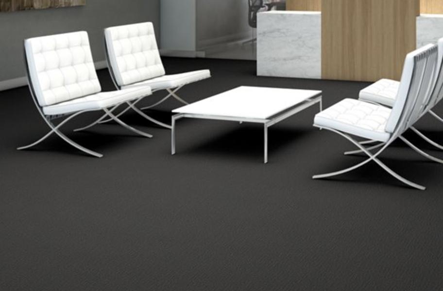 Low Pile Carpet: Shaw Function Carpet